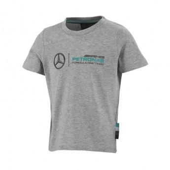 Mercedes AMG Petronas gyerek póló logo grey F1 2016